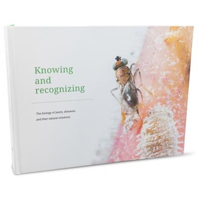 Book Knowing & Recognizing
